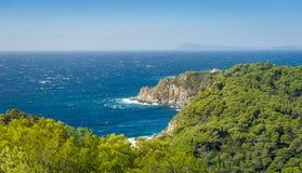 Het landschap van het Porquerolleseiland royalty-vrije stock fotografie