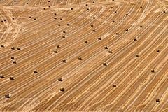 Het landschap van Ribera del Duero Royalty-vrije Stock Afbeelding