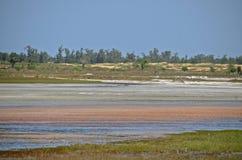 Het landschap van Senegal Stock Foto's