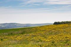 Het landschap van Sussex Royalty-vrije Stock Afbeeldingen