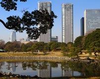 Het landschap van Tokyo, Japan royalty-vrije stock foto