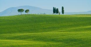 Het landschap van Toscanië Stock Afbeelding