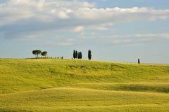 Het landschap van Toscanië Stock Afbeeldingen