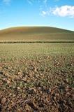 Het landschap van Toscanië Royalty-vrije Stock Foto's