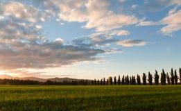 Het landschap van Toscanië Stock Foto's