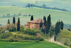 Het landschap van Toscanië - belvedere royalty-vrije stock foto