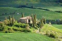 Het landschap van Toscanië - belvedere stock fotografie