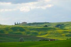 Het landschap van Val D ?Orcia: gele raapzaadgebieden en groene weiden, Toscani? royalty-vrije stock foto's