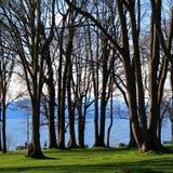 Het Landschap van Vancouver Stock Afbeeldingen