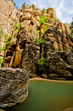 Het landschap van versmalt stijging in Zion National Park. Royalty-vrije Stock Afbeelding