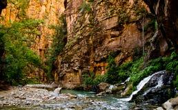 Het landschap van Versmalt stijging in Zion National Park. Royalty-vrije Stock Foto's