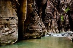 Het landschap van Versmalt stijging in Zion National Park. Stock Fotografie