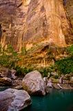 Het landschap van versmalt stijging in Zion National Park. stock foto
