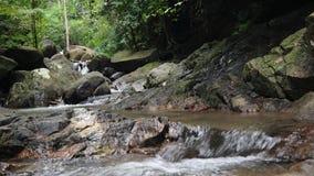 Het landschap van het wildernisparadijs van tropisch land Watervalcascade in groene regenwoudmotie van waterstroom van klip stock video