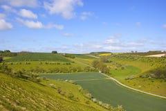 Het landschap van Yorkshire wolds Royalty-vrije Stock Foto