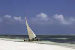 Het landschap van Zanzibar Royalty-vrije Stock Foto's