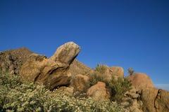 Het landschap van zuidelijk Californië, de V.S. Stock Foto's