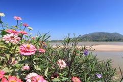 Het landschaps blauwe hemel van Thailand Royalty-vrije Stock Foto