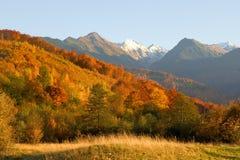 Het landschapsfoto van de herfst Stock Afbeelding