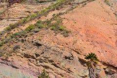 Het landschapslos Azulejos van Gran Canaria vulkanische kleurrijke rotsen hydromagmatic uitbarstingen stock fotografie
