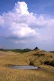 Het landschapsportret van de maan Stock Foto's