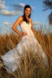 Het Lange Gras van de bruid Stock Afbeelding