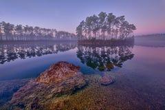 Het lange Zeer belangrijke Meer van de Pijnboom stock fotografie