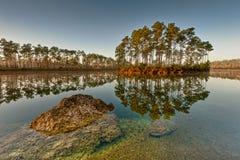 Het lange Zeer belangrijke Meer van de Pijnboom Stock Foto