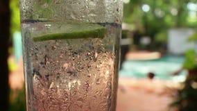 Het langzame koele tonicum van motiecu met mensen die in een pool springen stock videobeelden