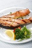 Het lapje vlees van de zalm stock foto