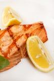 Het lapje vlees van de zalm stock afbeelding