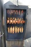 Het lapje vlees van de zalm in rookhok Stock Afbeeldingen