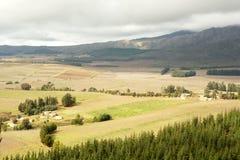 Het lapwerk van de landbouwgrond Royalty-vrije Stock Afbeeldingen