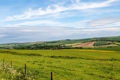 Het Lapwerklandschap van Sussex Royalty-vrije Stock Afbeeldingen