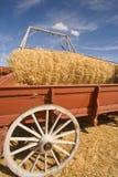 Het leegmaken van de wagen van tarwe. Stock Foto's