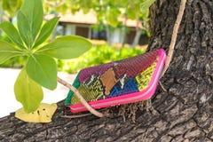 Het leerportefeuille van de luxeslang op houten achtergrond Dure multy de kleurenbeurs van de snakeskinpython royalty-vrije stock afbeeldingen