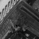 Het leeuwgezicht is op de hoek van balconyroyalty-vrije stock fotografie