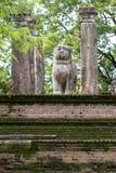 Het leeuwstandbeeld binnen de raadskamer van Koning Nissankamamalla in Polonnaruwa in Sri Lanka Stock Foto's