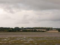 Het lege getijde van de estuariumscène uit met land van het seaguls het donkere land stock fotografie