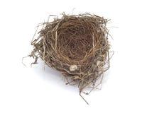 Het lege nest van vogels Stock Afbeeldingen