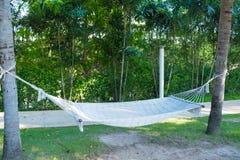 Het lege witte hangmat hangen tussen twee palmen in tuinverstand stock afbeeldingen