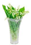 Het lelietje-van-dalen, lelietje-van-dalen, Convallaria-majalisboeket bloeit in een transparante vaas, geïsoleerde, witte achterg Stock Afbeeldingen