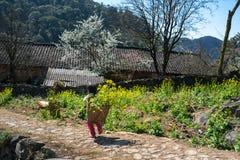 Het lentetijdlandschap met de tuin van de raapzaadbloem, de pruimbloesem en de etnische minderheidjonge geitjes met manden van ra Royalty-vrije Stock Afbeeldingen