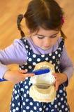 Het leren om menselijke tanden schoon te maken en te borstelen Stock Afbeeldingen