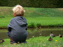 Het letten op van het kind op de eend Stock Foto's