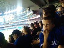 Het letten van op Blauw Vlaamse gaaienhonkbal op rogerscentrum in Toronto Stock Afbeeldingen