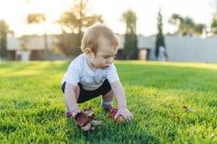 Het leuke baby spelen met appelen op een groen gazon in het Park Concepten éénjarig kind stock foto