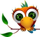 Het leuke beeldverhaal van de aravogel Stock Afbeelding