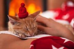 Het leuke gemberkatje geniet van bedrijf van zijn eigenaar - slaap op woma stock foto's