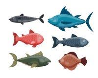 Het leuke grappige zwemmende grafische dierlijke karakter van het vissenbeeldverhaal en onderwater oceaan aquatisch de vin zeewat Royalty-vrije Stock Foto